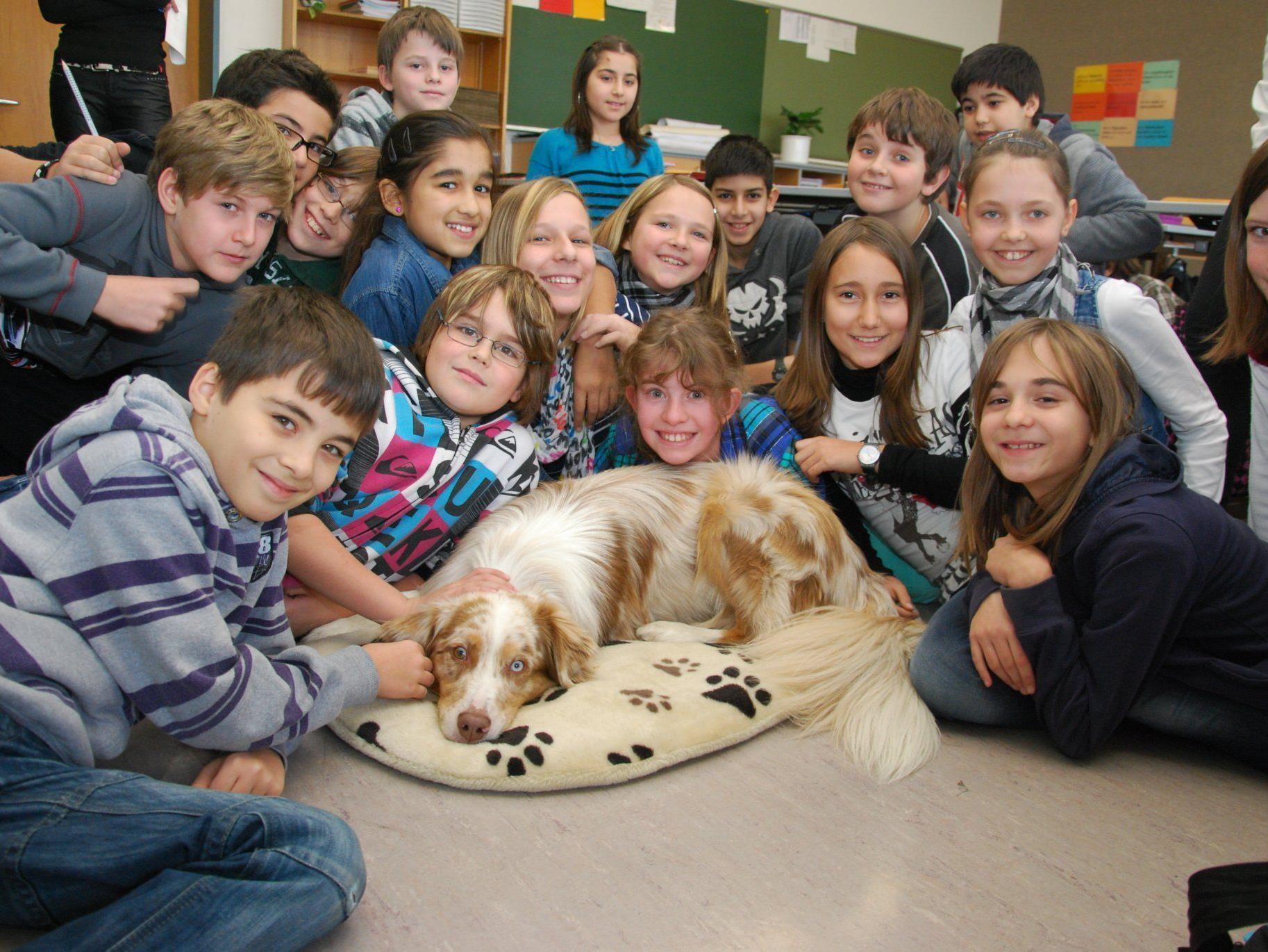 Schulhund im Einsatz in Dornbirn