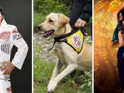 Benefizgala mit Las Vegas-Elvis, Rettungshunde-Show und Bauchtanz aus 1001 Nacht - VOL.at verlost 2x2 Tickets!