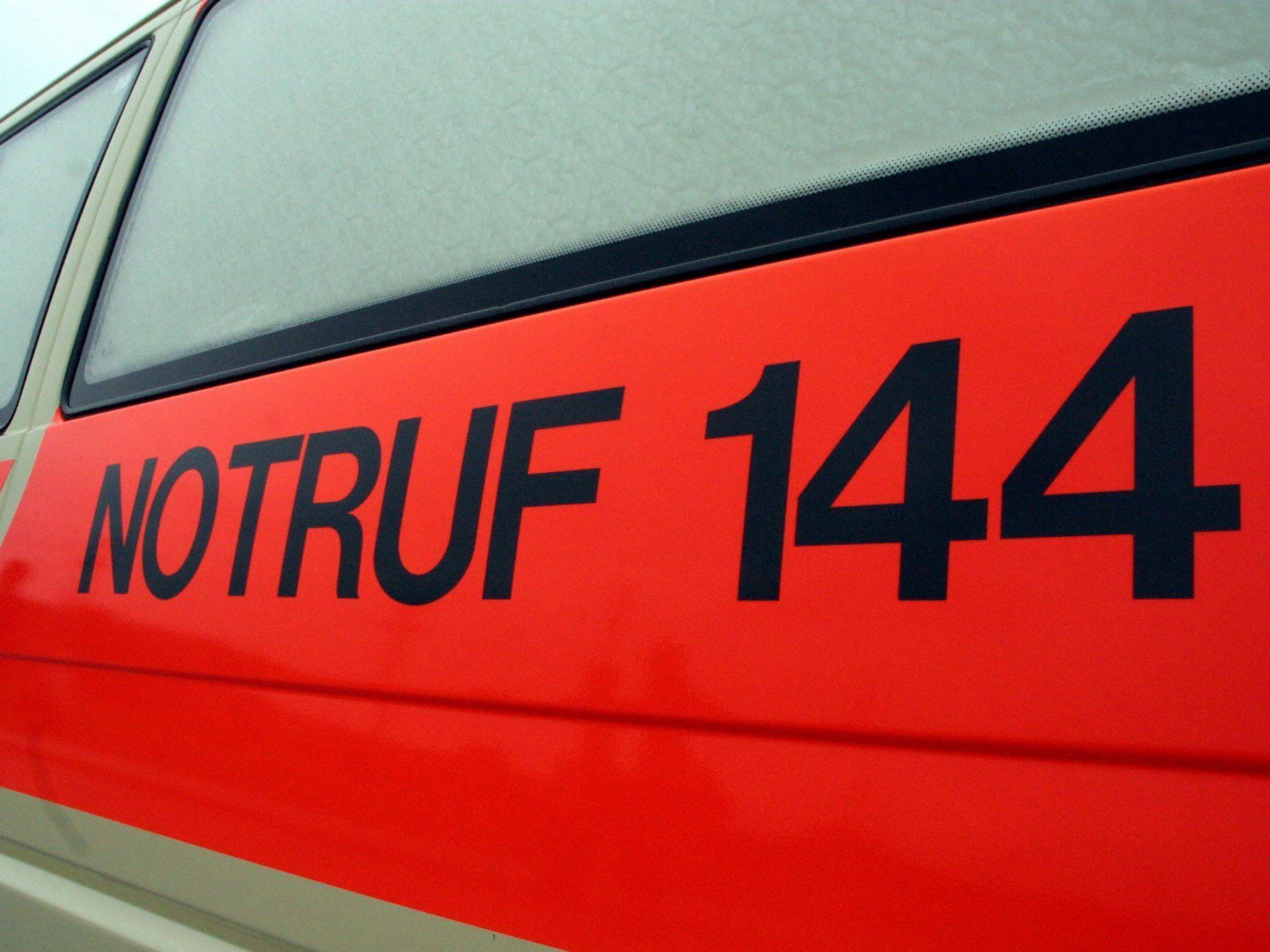 Eine 34-jährige Pkw-Lenkerin konnte einen Zusammenstoß trotz Notbremsung aber nicht mehr verhindern.