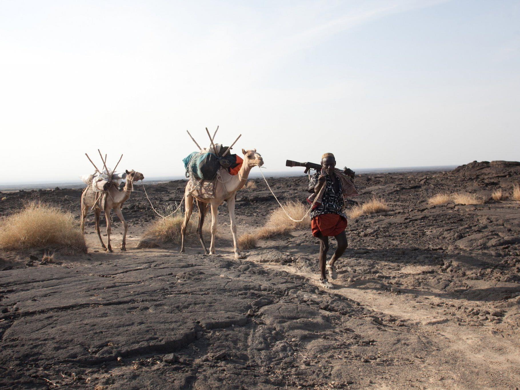 Kamele mit ihrem Führer in der Danakil-Wüste im Norden Äthiopiens, im Jahr 2011. Bei dem Überfall auf europäische Touristen in dieser Gegend ist ein Österreicher getötet worden.