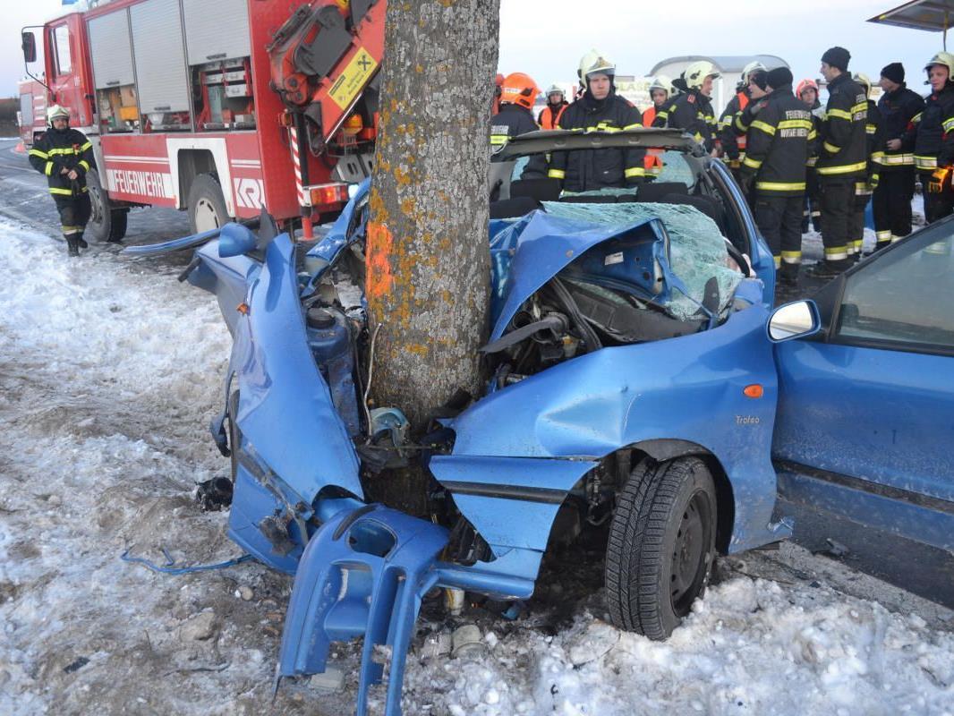 Praktisch um den Baum gewickelt hat sich dieses Fahrzeug