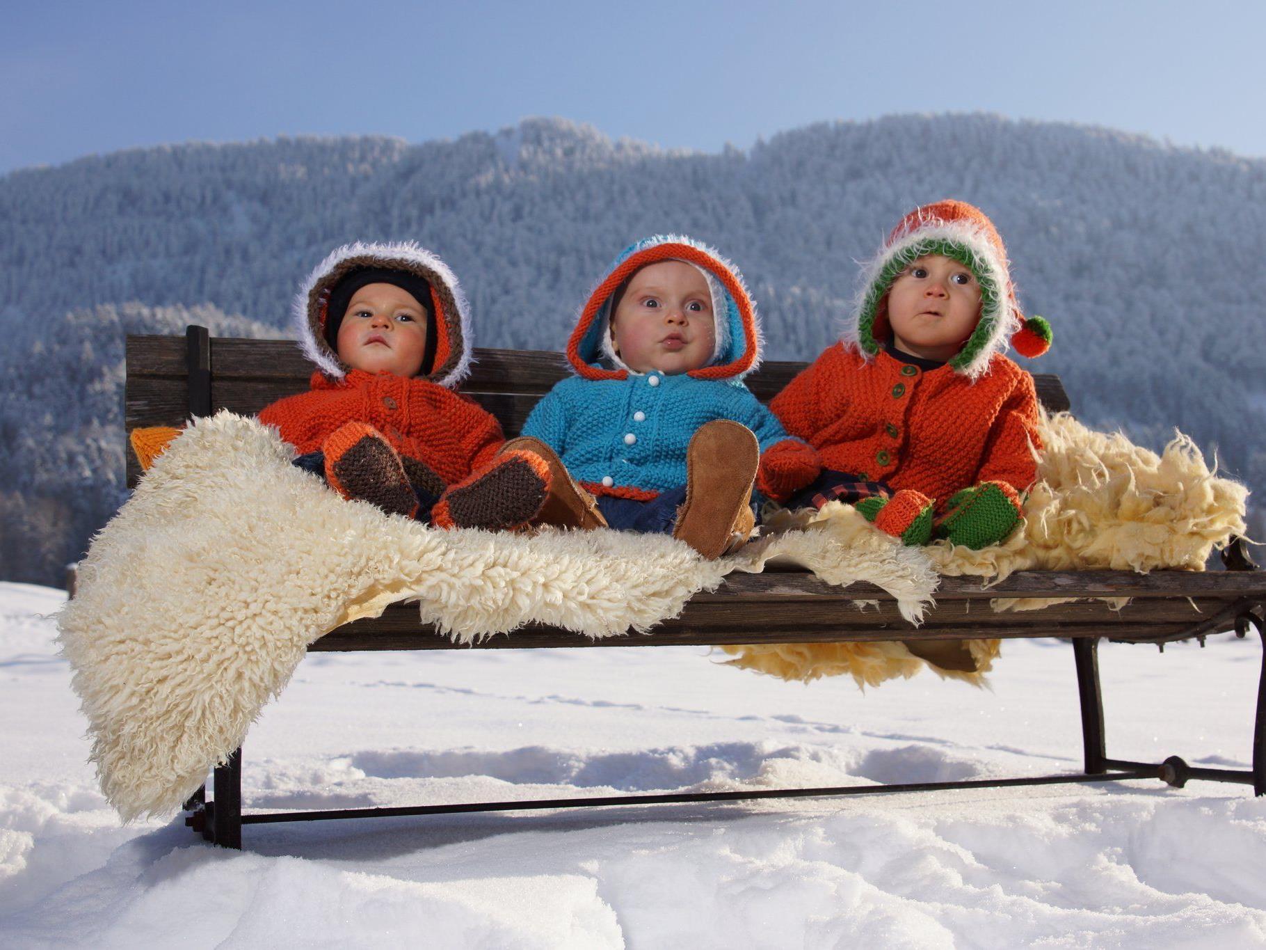 Symbolbild: diese Wälderbabys sind Jarno,Vitus,Konrad
