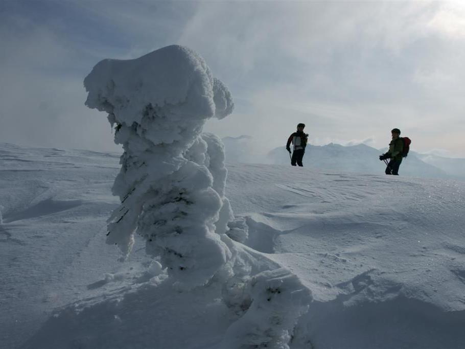 Skitouren auf der Niedere