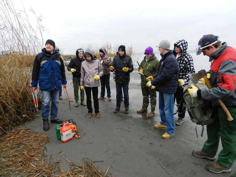 Mehrerauer Schüler engagieren sich für den Umweltschutz