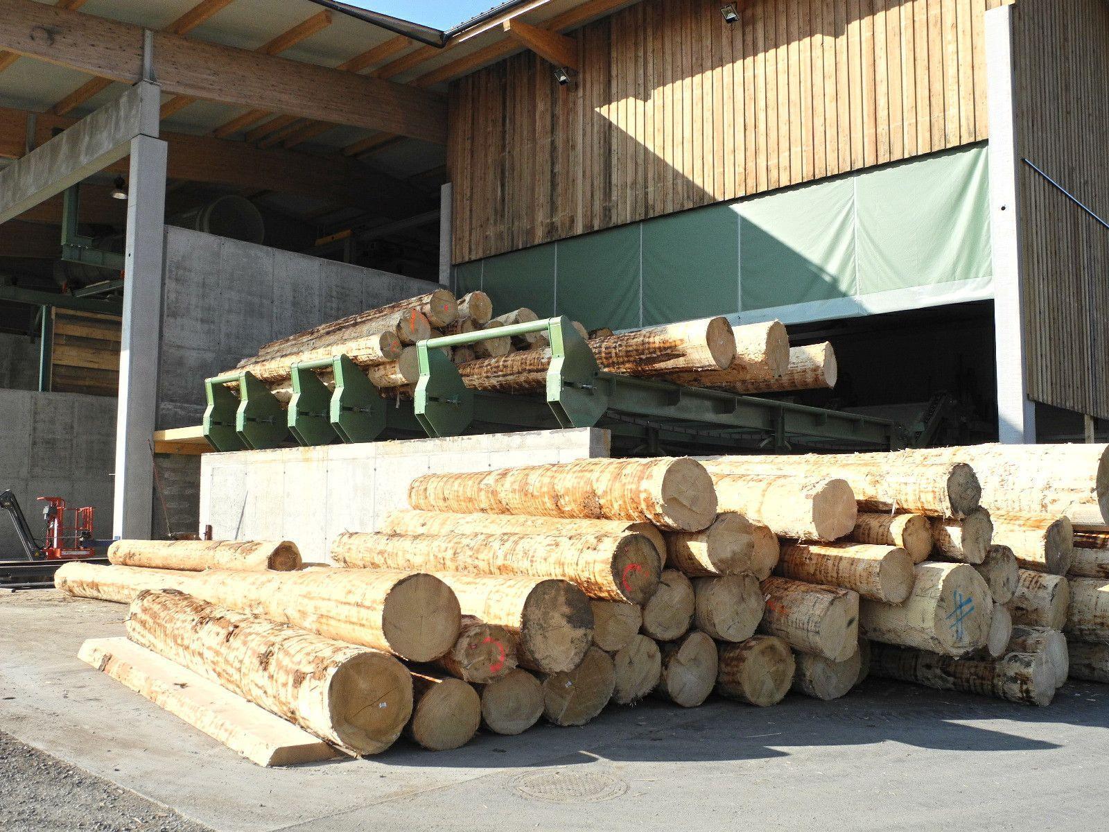 Im Vollbetrieb werden täglich rund 100 Festmeter, 80 bis 100 Starkholzstämme, verarbeitet.