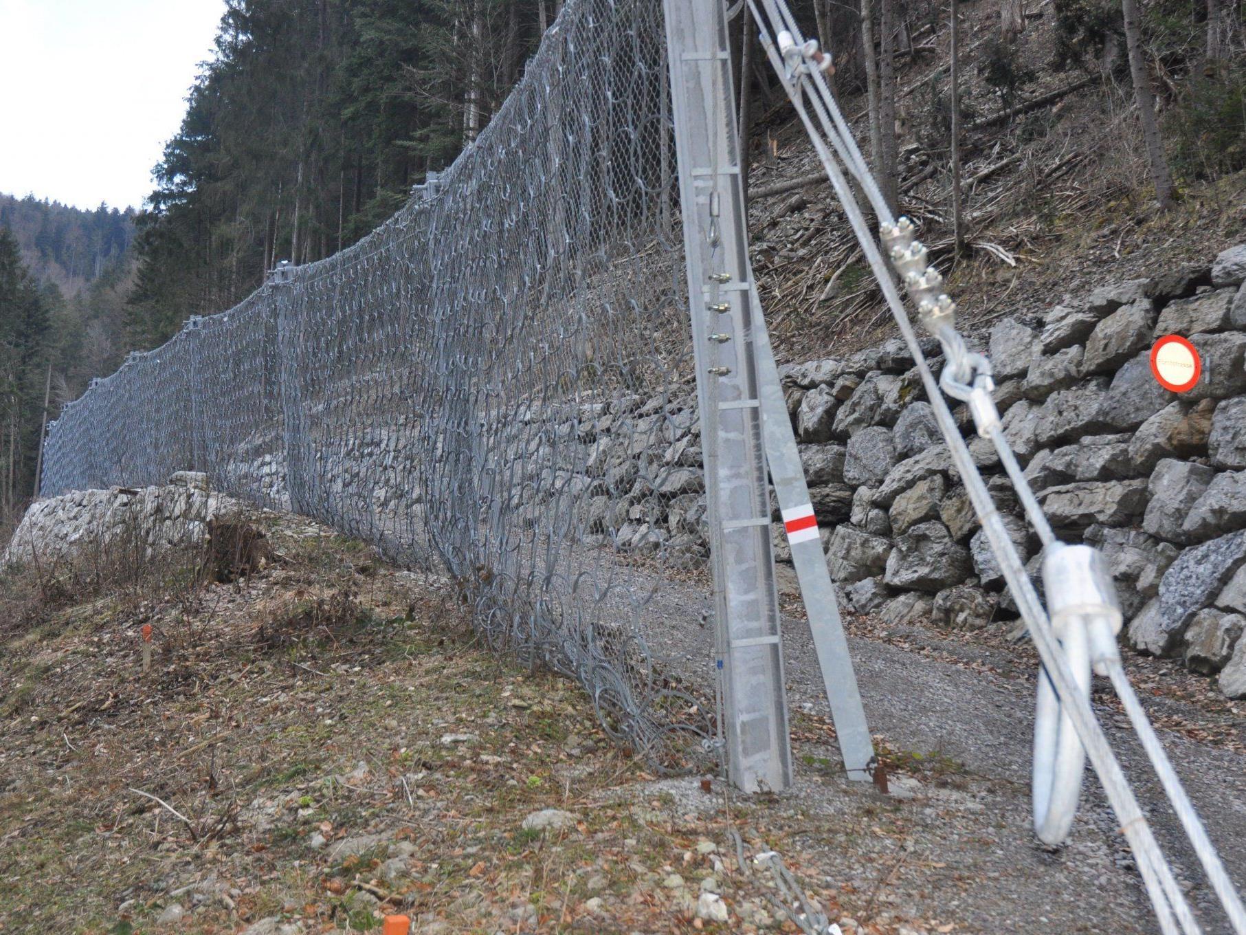 Ein Schutznetz dieser Art, soll für die Sicherheit im Klauser Wald sorgen.