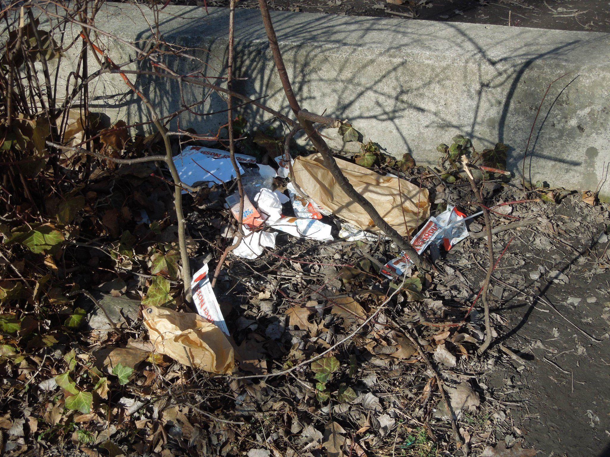 Rund um das Schulgelände im Hasenfeld liegt eine Unmenge an Müll, der achtlos entsorgt wird.