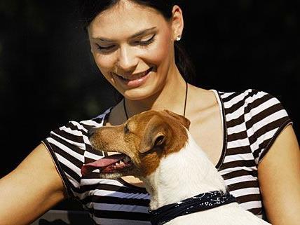 Hundetrainer können sich künftig ihre Ausbildung zertifizieren lassen