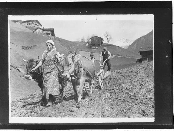 Landwirtschaft im Montafon im 19. und 20. Jahrhundert - Vortrag mit Dr. Ingrid Böhler