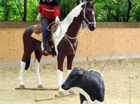 Tiere schnell und schonene einfangen mit dem Lasso