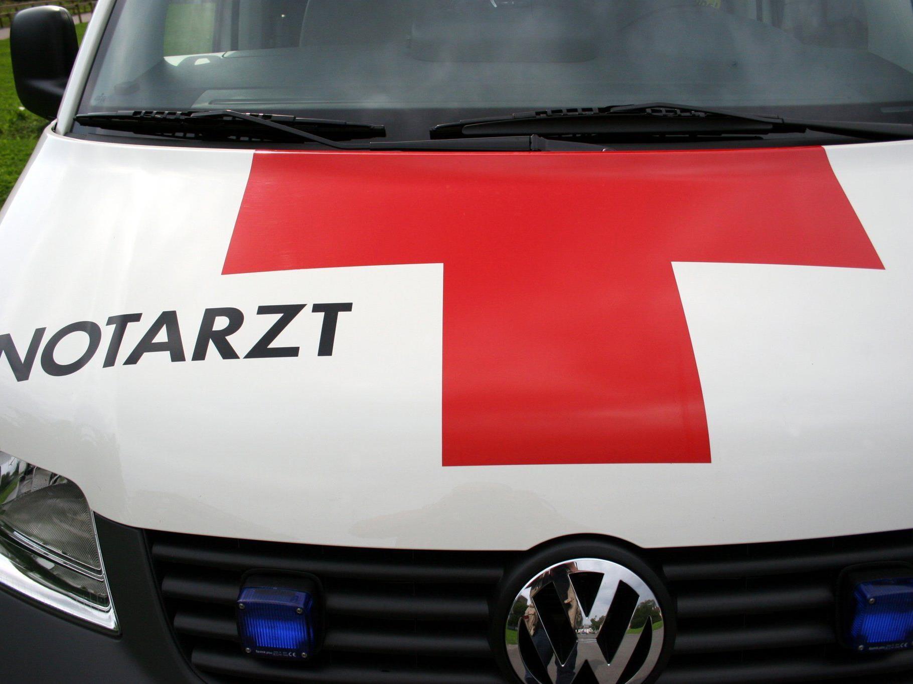 Ein Autolenker wurde leicht verletzt - Stute musste eingeschläfert werden