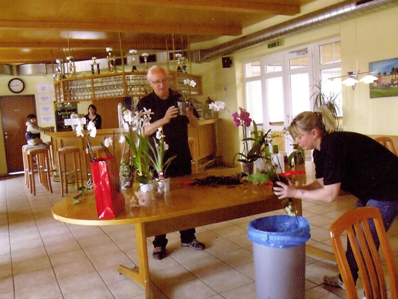 Information und Pflege von Orchideen