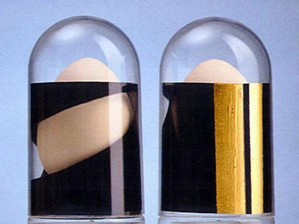 Die beiden Jahreseier der Gampriner Künstlerin Brigitte Hasler