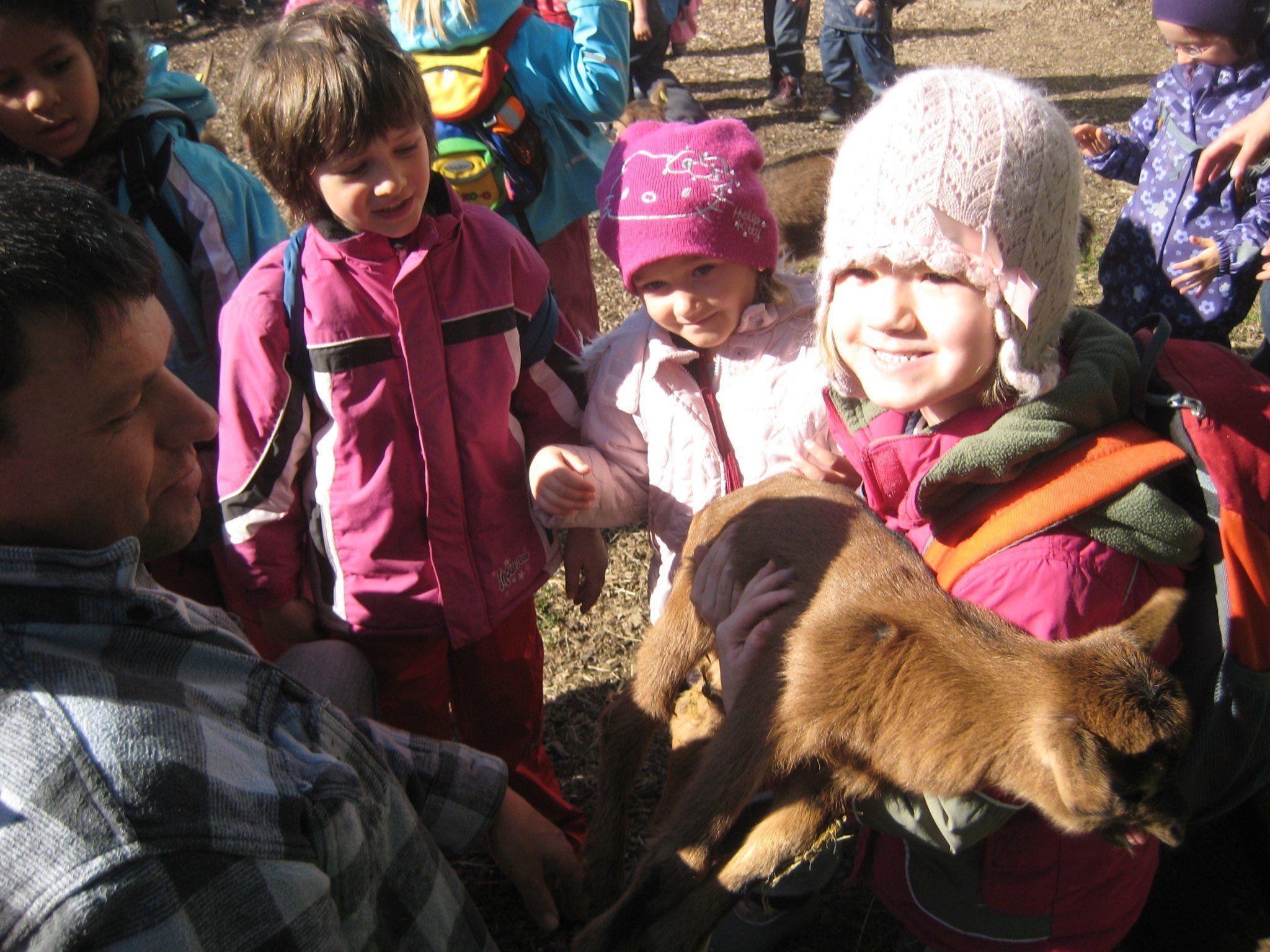 Ziegenausstellung bei der Hauptschule Oberau in Gisingen: Familien werden begeistert sein.