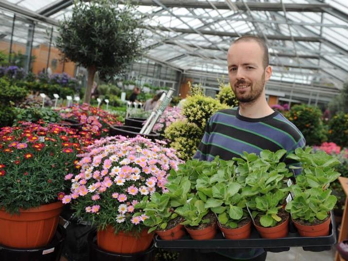 Alexander Angeloff bietet derzeit rund 450 verschiedene Kräuter- und Gemüseraritäten zum Kauf an.