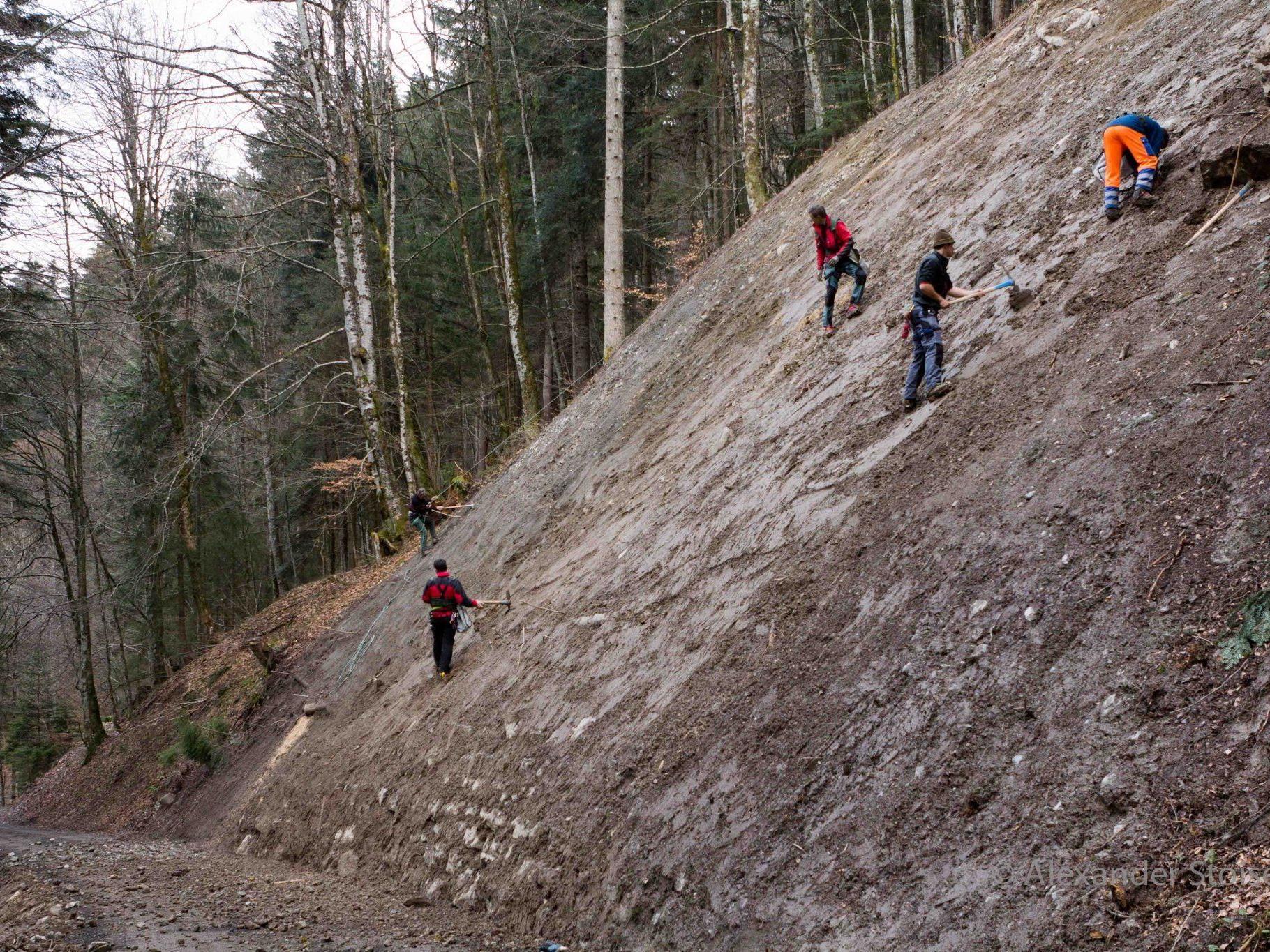 Eine steile, sanierte Rutschfläche wurde von Mitgliedern der Bergrettung Vandans aufgeforstet.