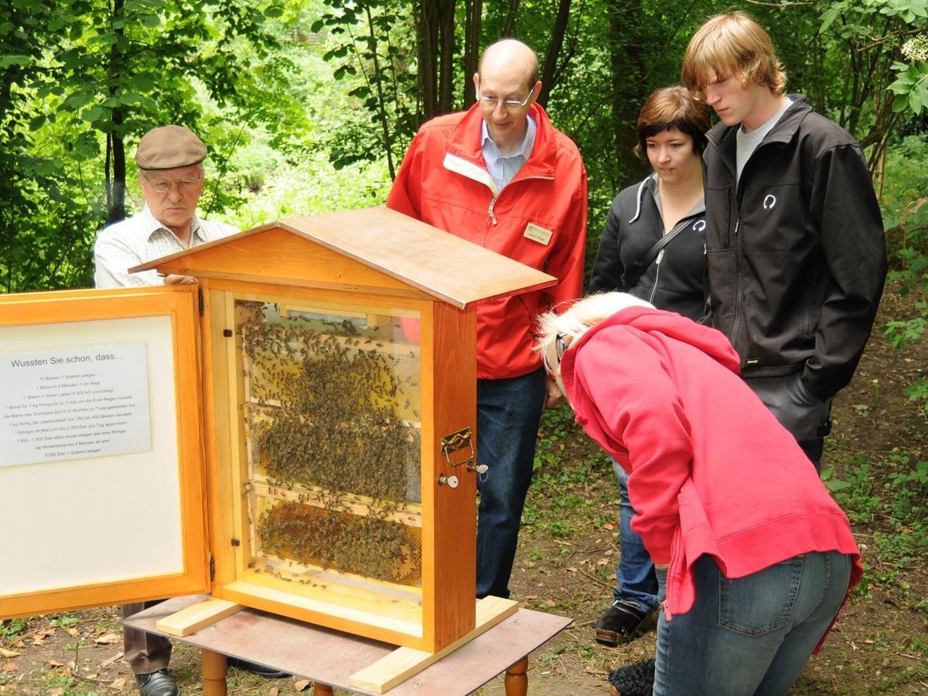 Erfolgreiche Öffentlichkeitsarbeit des Bienenzuchtvereins Höchst, Fußach, Gaißau, Hard