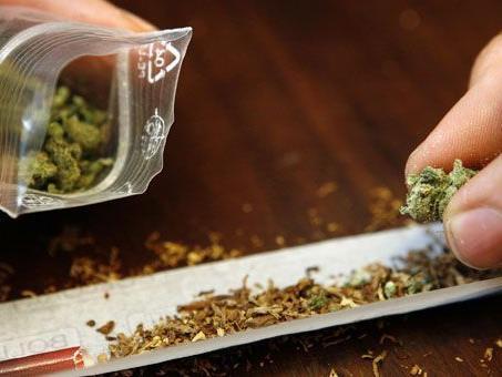 Das Cannabis bezog der 13-Jährige von vielen Dealern.