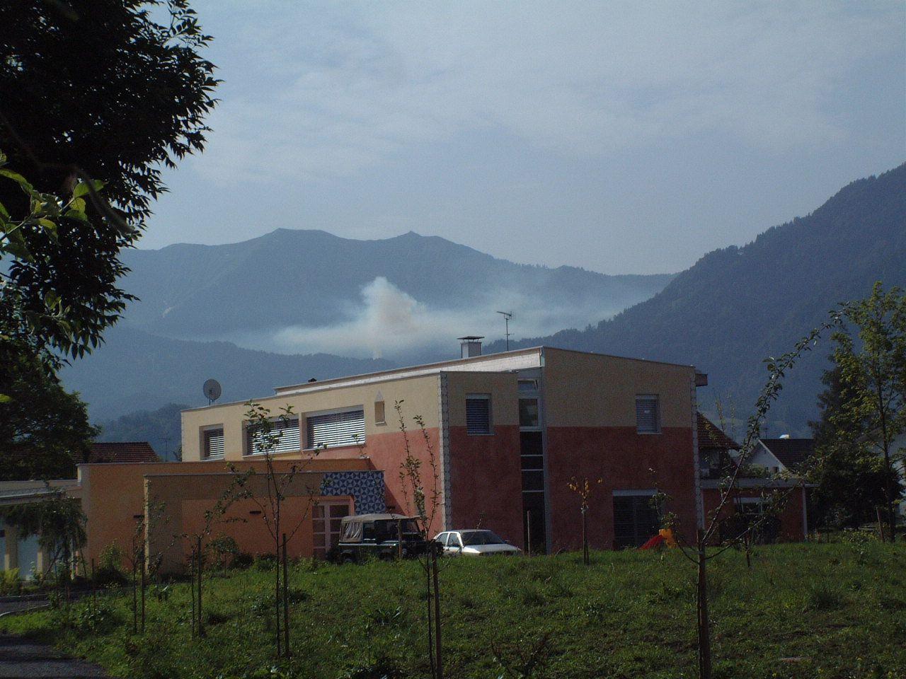 Wolfgang Juen ist dagegen, dass die heimischen Wälder ständigen Rauchschwaden ausgesetzt sind.