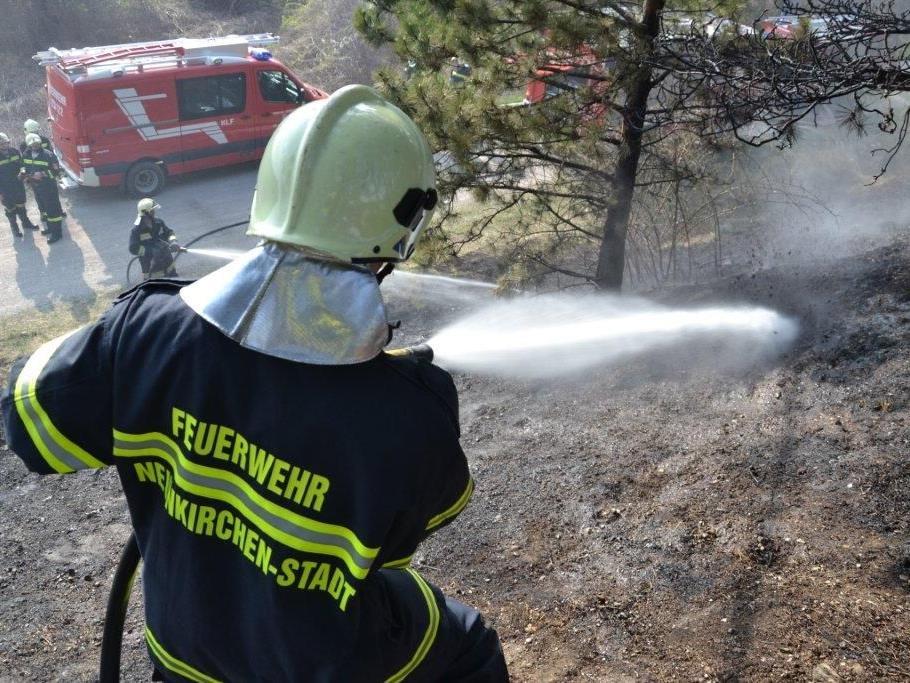 Gerade noch konnte die Feuerwehr eine Ausbreitung des Bahndammbrandes auf einen Wald verhindern