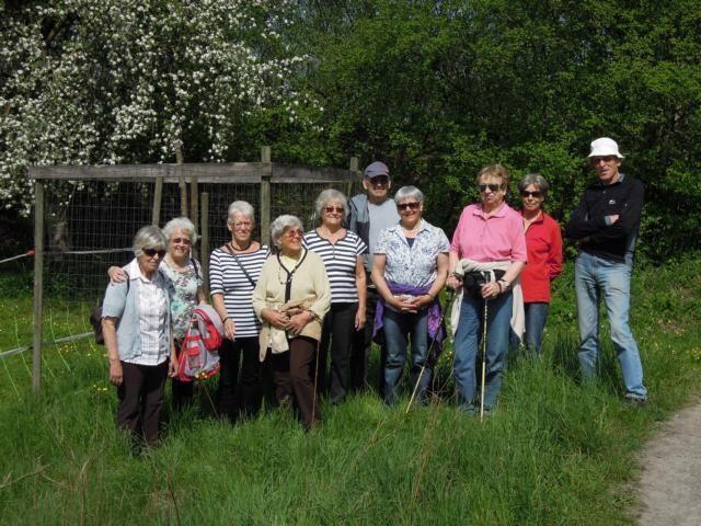Riedwanderung der Senioren Lustenau
