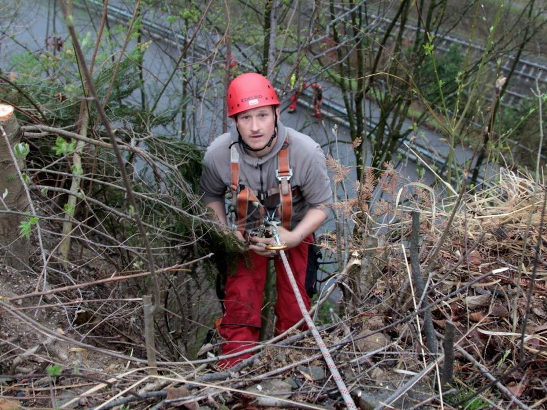 Kein leichter Job am Seil hängend: Stefan hat auch die Aufgabe, Sträucher und kleine Bäume zu entfernen