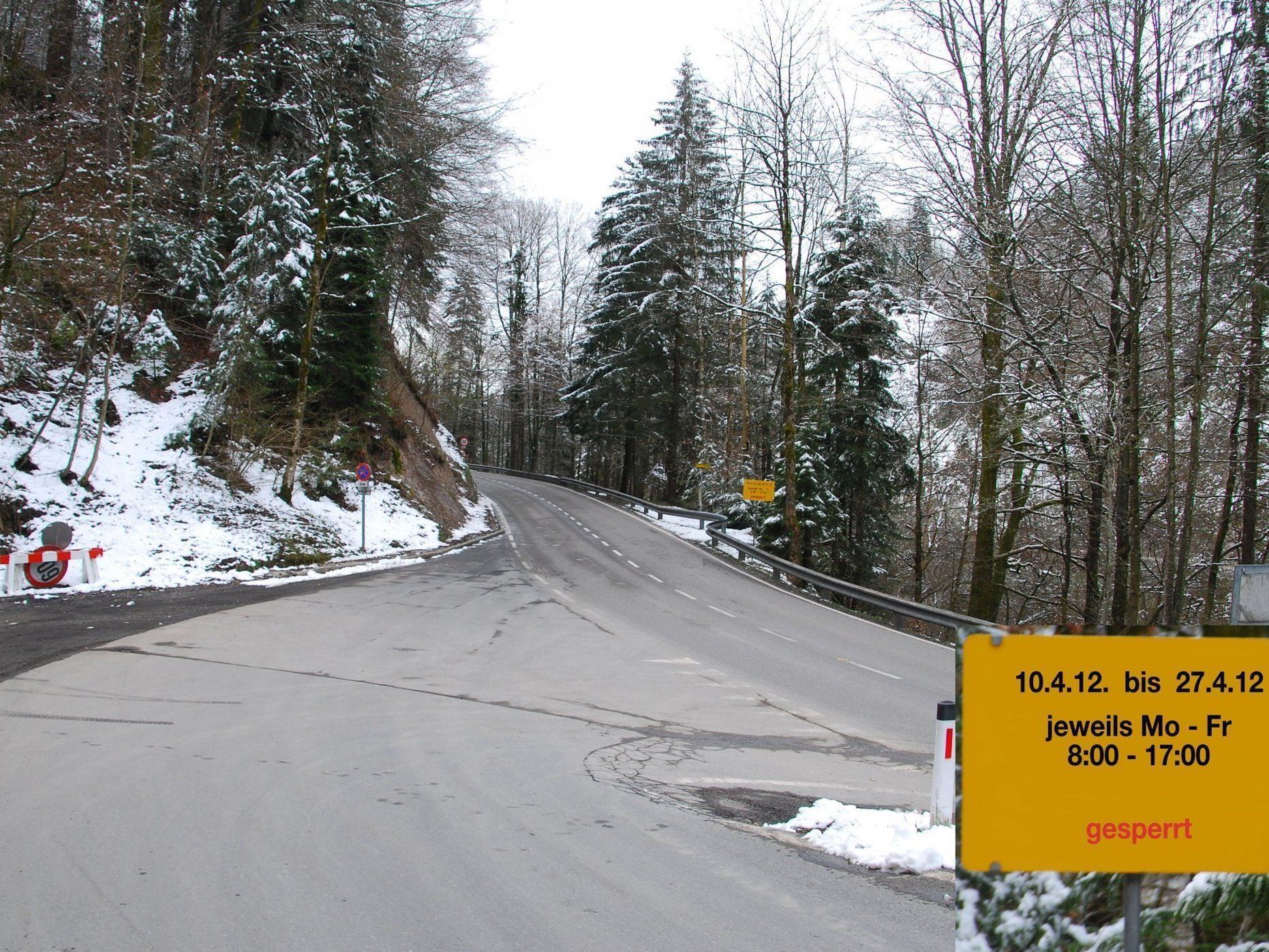 Wegen Forstarbeiten muss die Langenerstraße vom Wirtatobel bis Langen wochentags gesperrt werden.