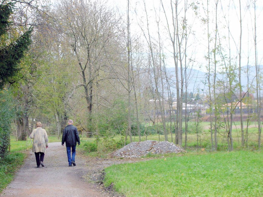 Die Spazierwege im Naherholungsgebiet Neunteln sollten laut StR. Raos besser gepflegt werden.