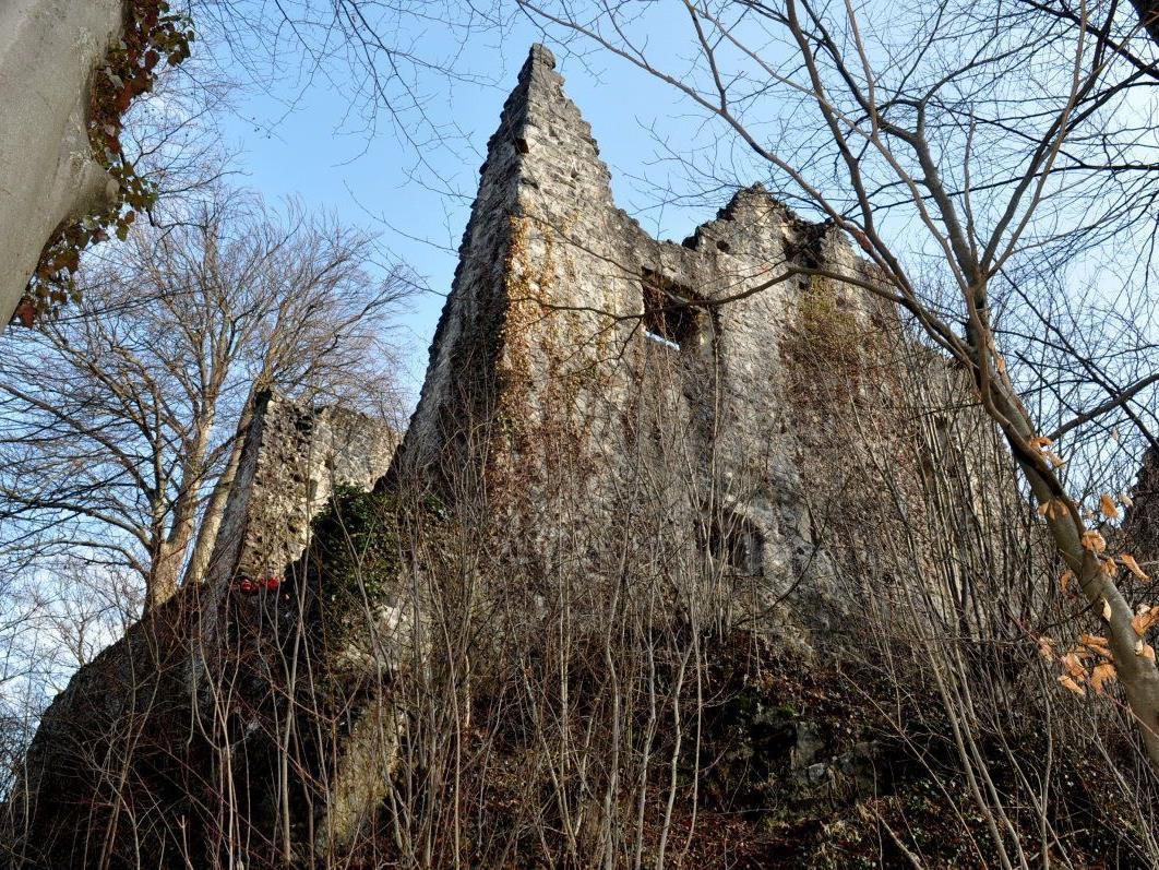 Am Sonntag, den 15. April, findet eine interessante Führung zur Ruine Neuburg statt.