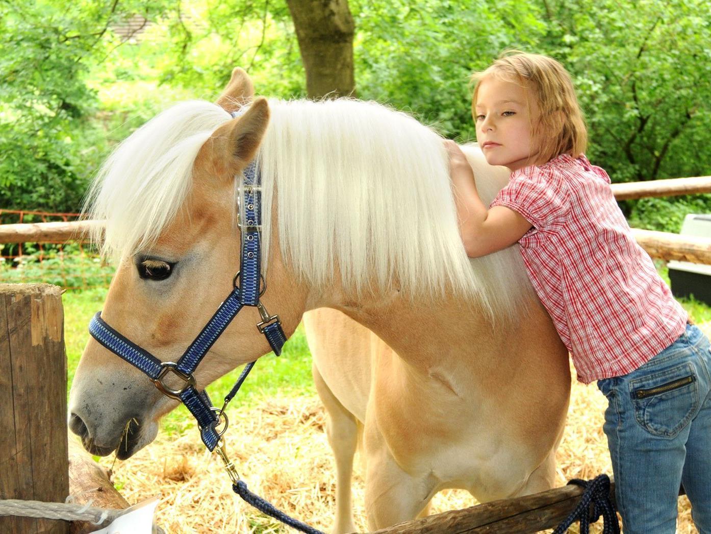 Besonders die Kinder sind stets von der Tierausstellung in Höchst begeistert.