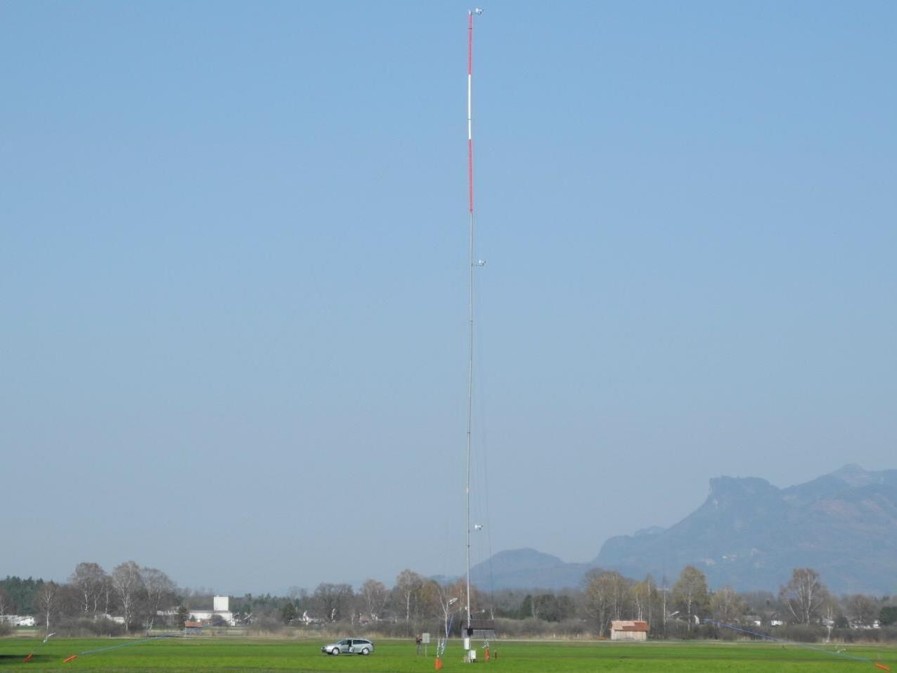 Diese 50 Meter hohe Mast mit dem notwendigen technischen Gerät misst die Windgeschwindigkeiten im Ruggeller Riet