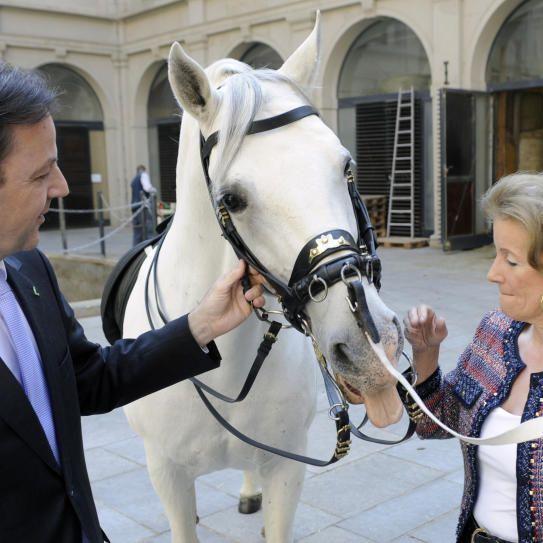 Umweltminister Berlakovich und Lipizzaner-Chefin Elisabeth Gürtler freuen sich über den Gewinn der Hofreitschule