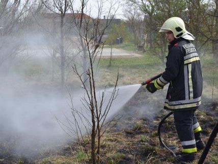 Weil Kinder mit Streichhölzern spielten, kam es am Dienstag zum Flurbrand in Felixdorf.
