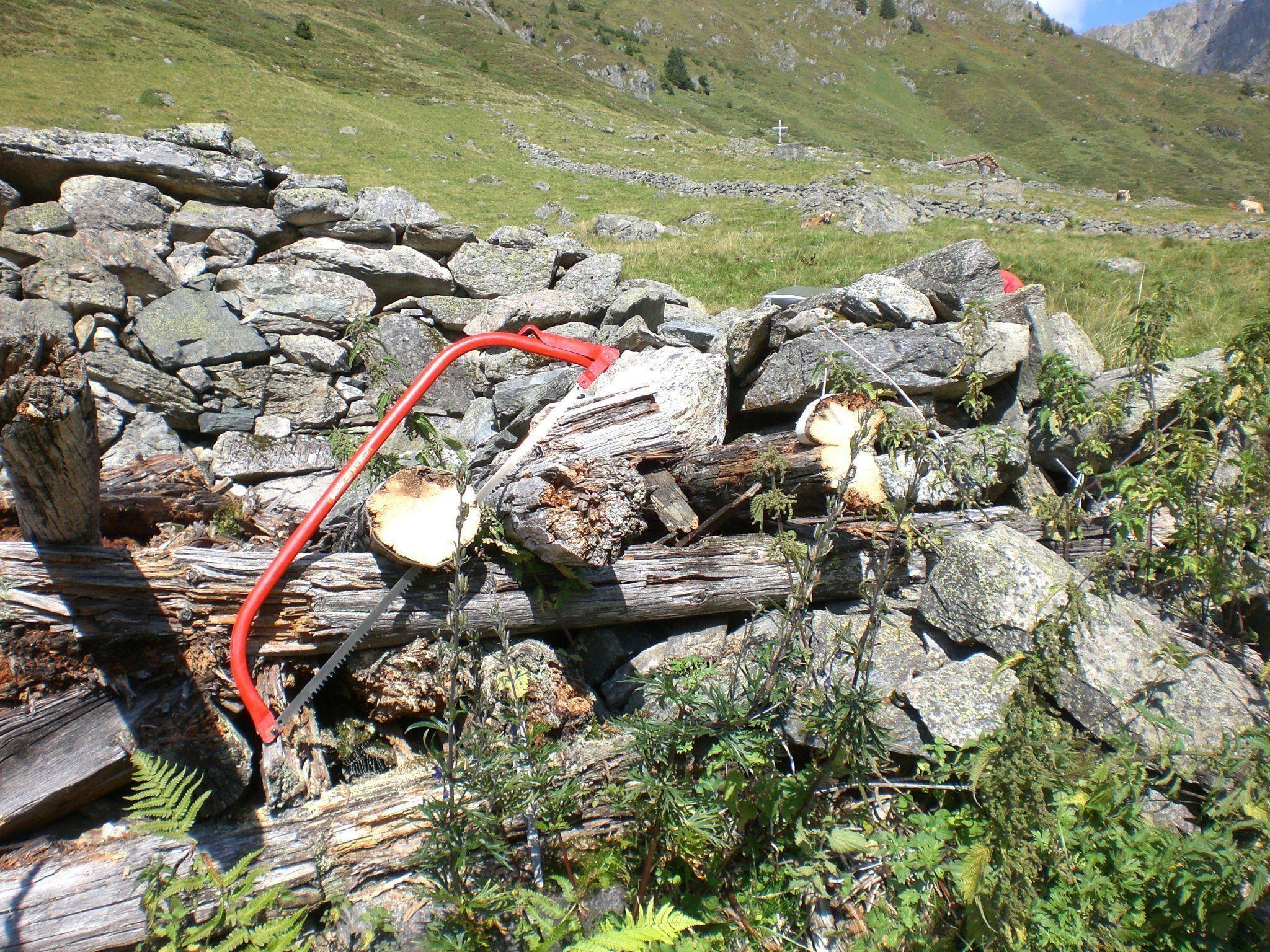 Holzreste alpiner Ruinen lassen interessante Rückschlüsse zu.
