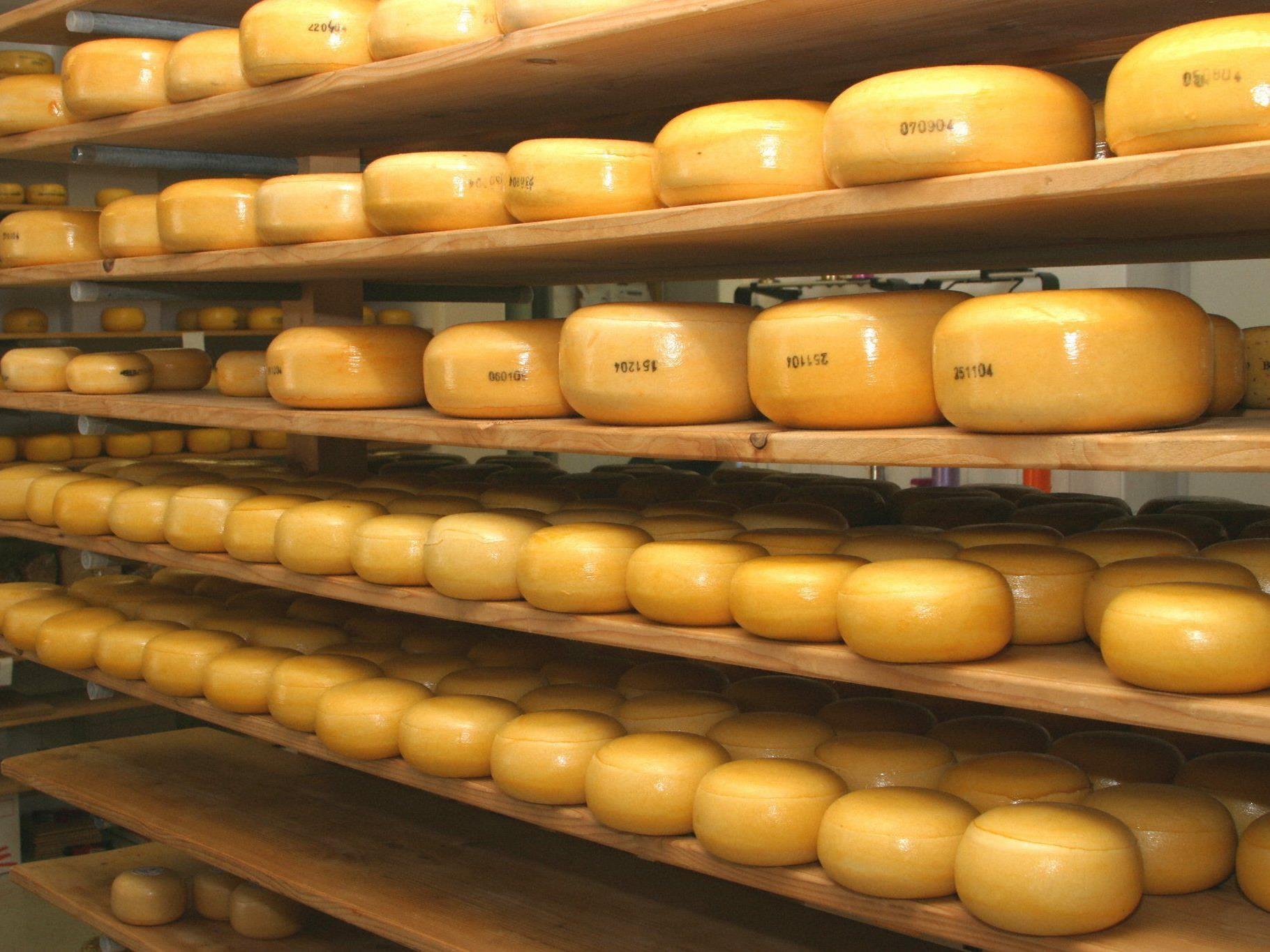 """Rund 100 Mitarbeiter sollen im geplanten """"Käse-Kompetenzzentrum"""" wie bisher die Schnitt- und Hartkäsesorten """"Bergkäse"""", """"Gouda"""" und vor allem """"Emmentaler"""" erzeugen."""