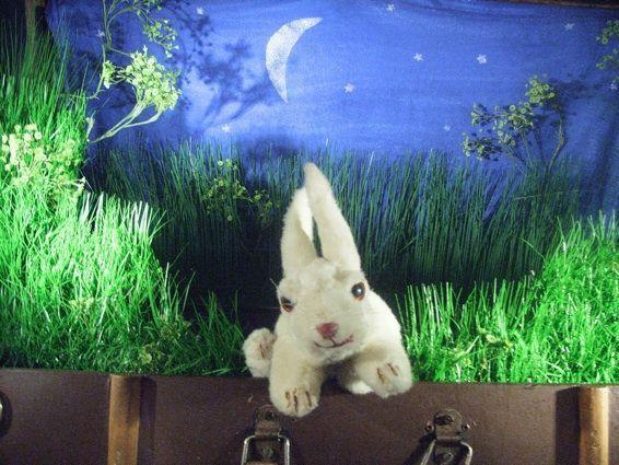 Der weisse Hase