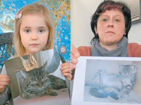 Die fünfjährige Anna Gasser vermisst ihre Katze Mathilda. Und Ursula Grabher weiß nicht, wo ihr Kater Rambo abgeblieben ist.