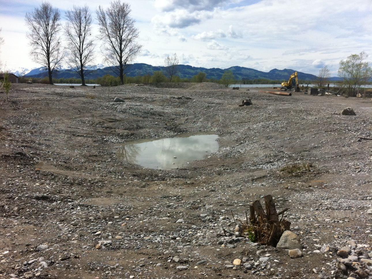 Geländemodellierungen und Bepflanzungen sind bereits erfolgt.