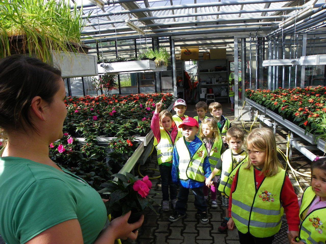 Gärtnerin Silvia erklärten den Kleinen die Arbeit in den Glashäusern
