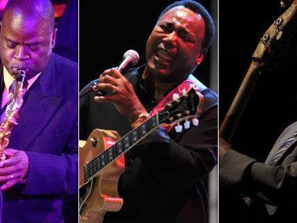 Das Nova Jazz und Blues Night Festival findet heuer wieder in Wiesen statt