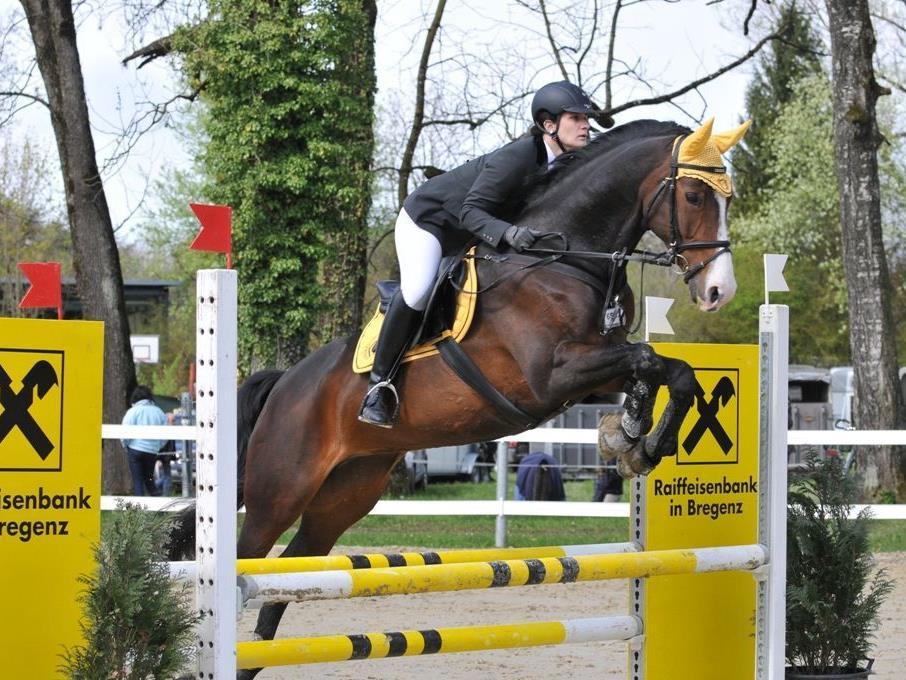 Mit Spannung erwartet - das diesjährige Springreitturnier der Bregenzer Reitervereinigung.