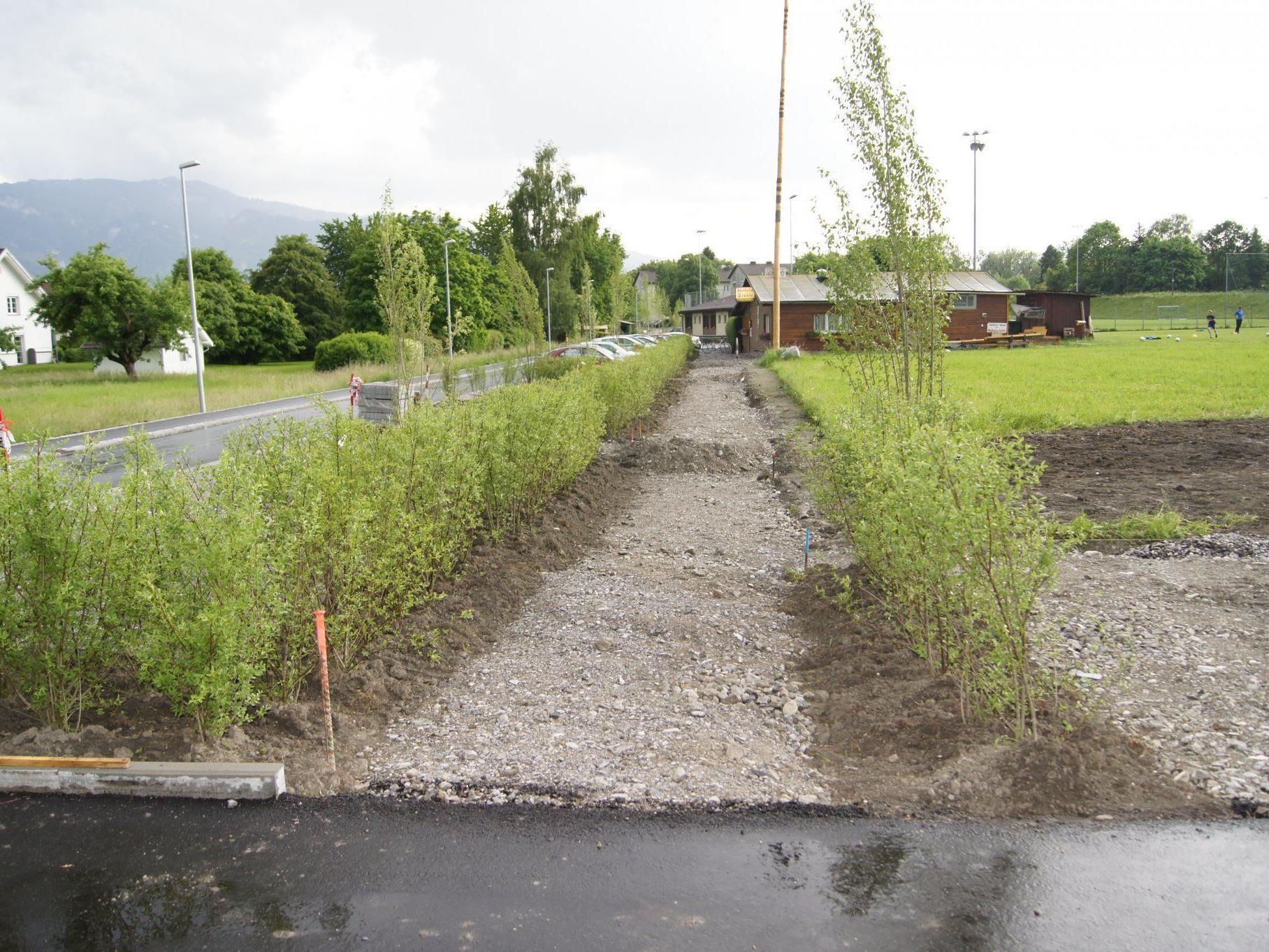 Großzügige Bepflanzung der Fußwege und Parkplätze im oberen Teil der Reichenaustraße.