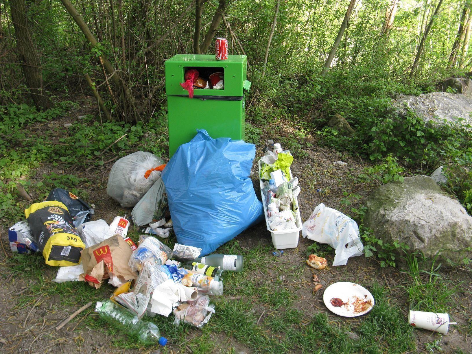 Die Situation am Alten Rhein bezüglich Müllverunreinigungen hat sich laut Norbert Ender immer noch nicht verbessert.