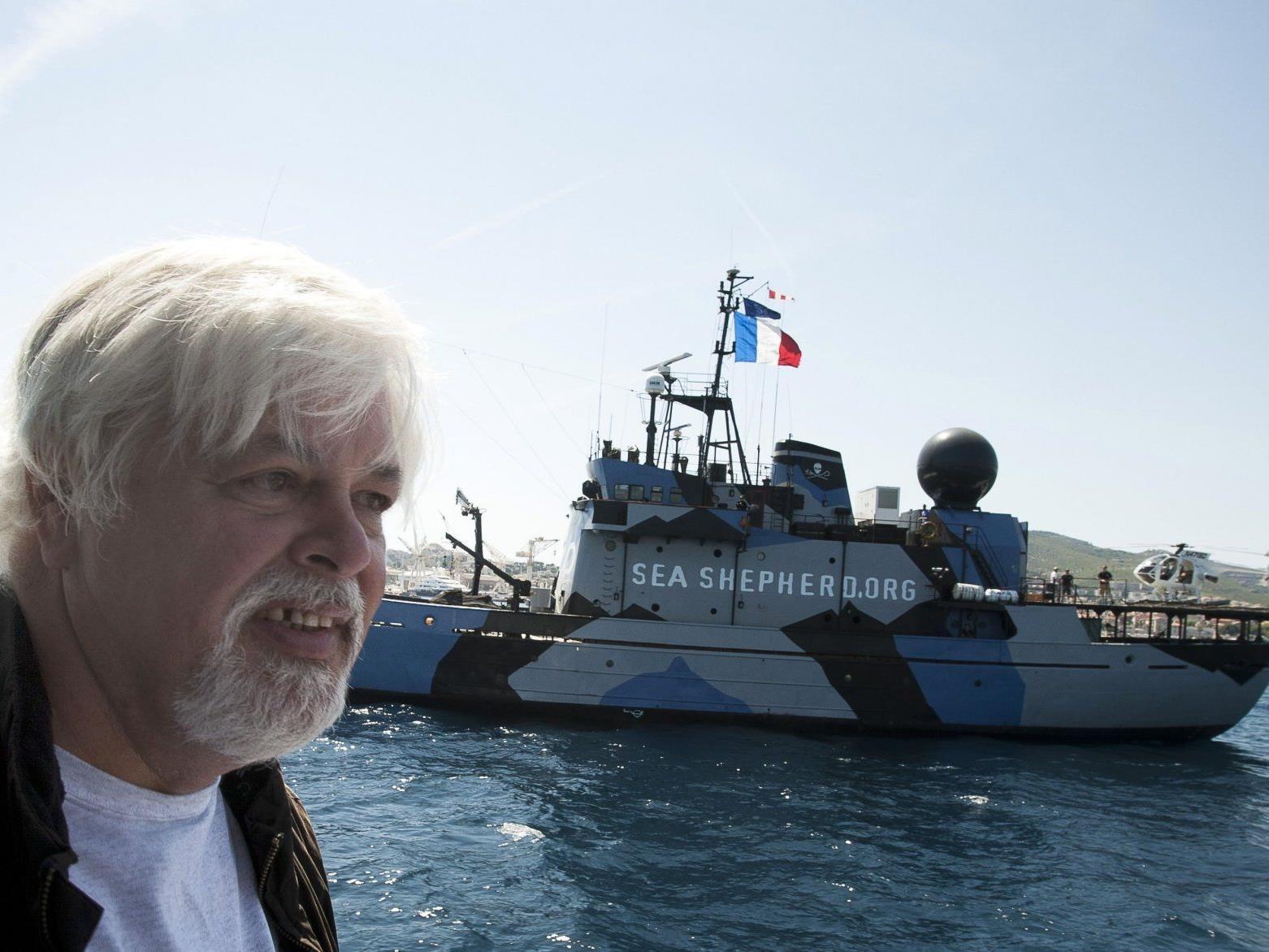 Wird der Tierrechtsaktivist Paul Watson an Costa Rica ausgeliefert?