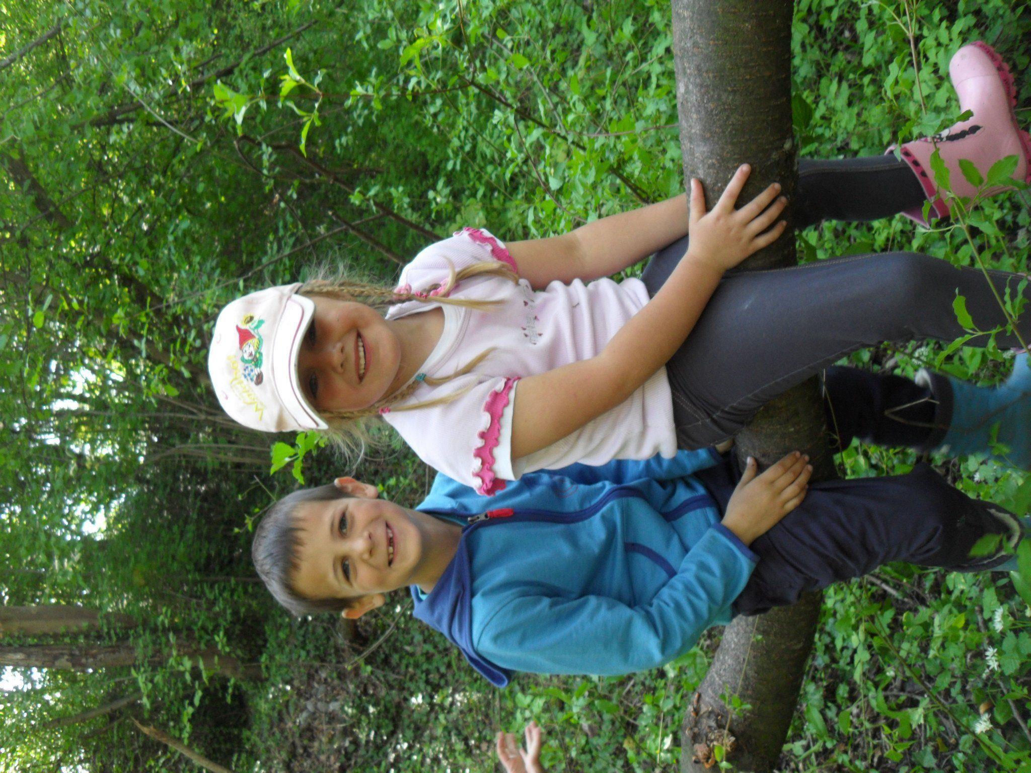 Bewegungsspaß im Wald