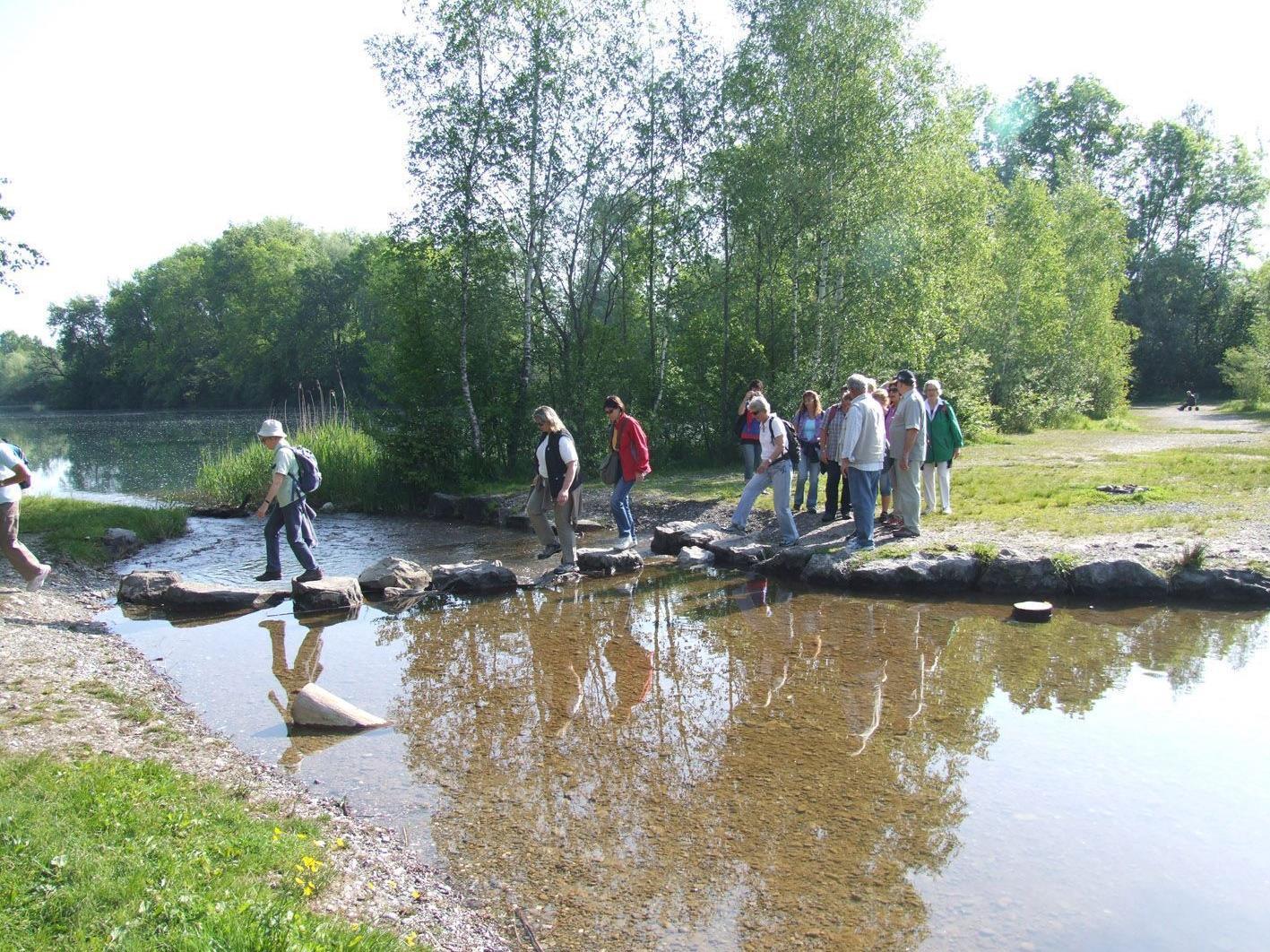 """Teilnehmer der """"Spargelwanderung"""" bei der Überquerung der Staatsgrenze am Alten Rhein."""