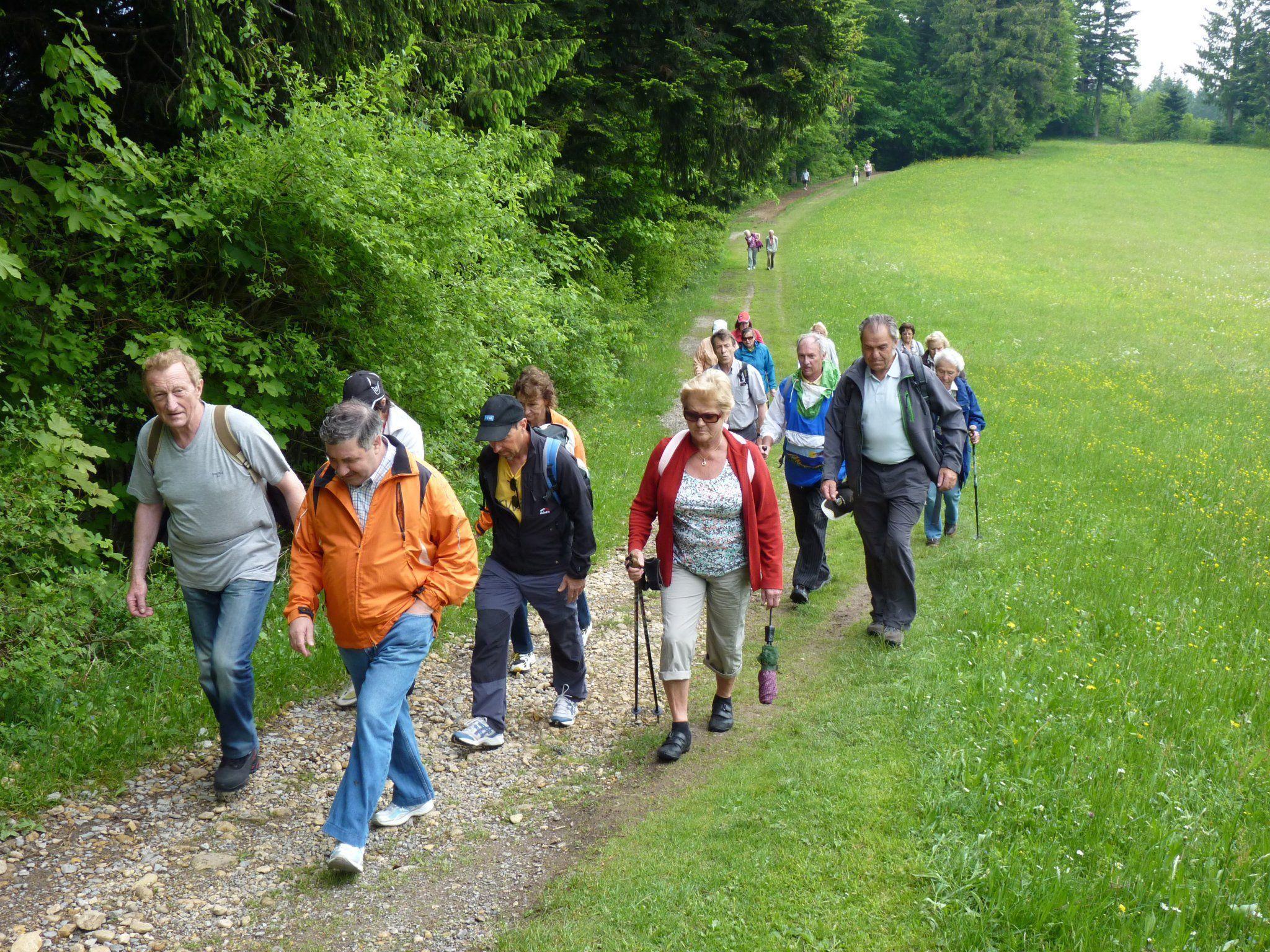 Die Bürserberger Senioren waren von der Pfänderstock-Wanderung beeindruckt.