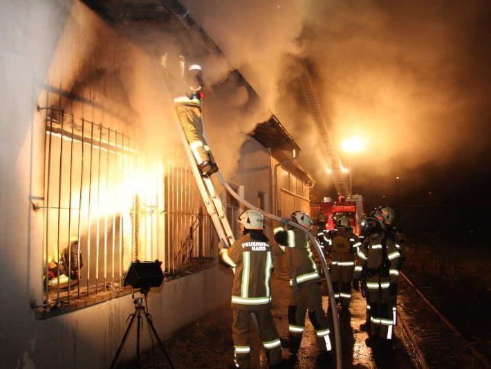 Großbrand im November in Harder Sägewerk - Mutmaßlicher Brandstifter vor Gericht