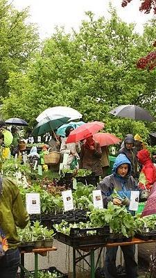 Reger Andrang beim diesjährigen Arche-Noah-Markt.
