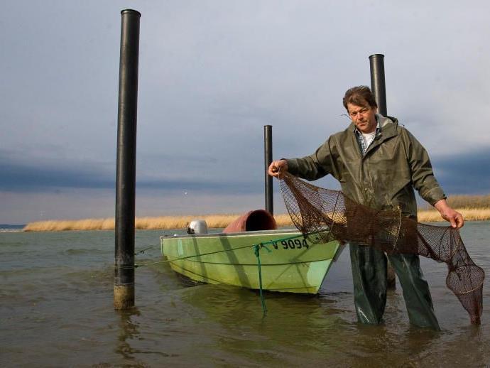 Beute beim Fischfang im Bodensee wird seit Monaten geringer.